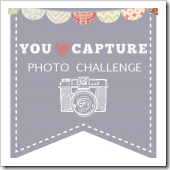 You-Capture-sidebar-150x150.jpg